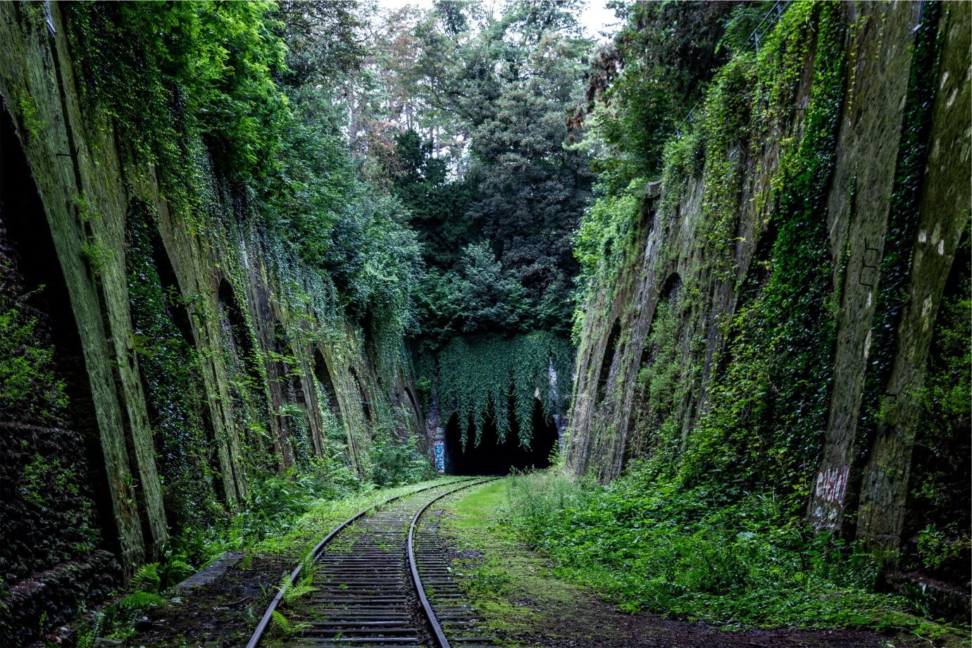 Train tracks through nature