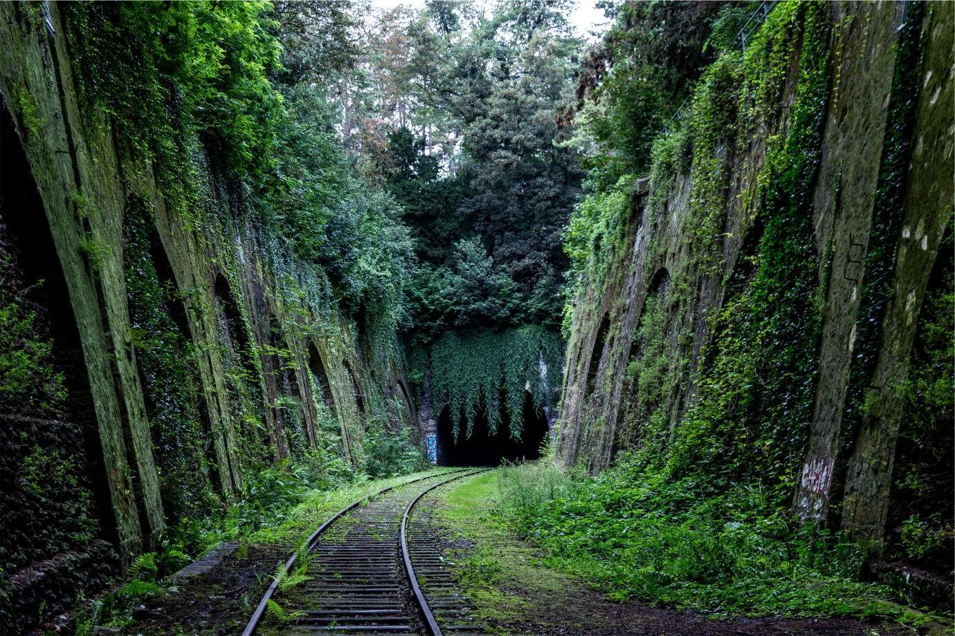 Train tracks through nature