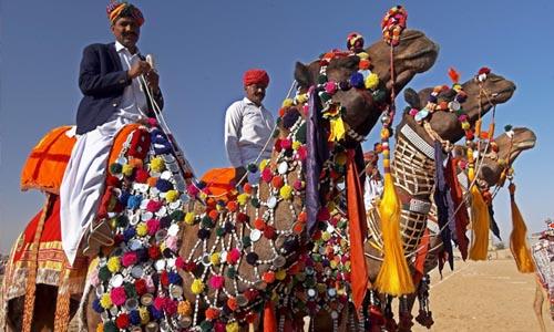 Rajasthan 13