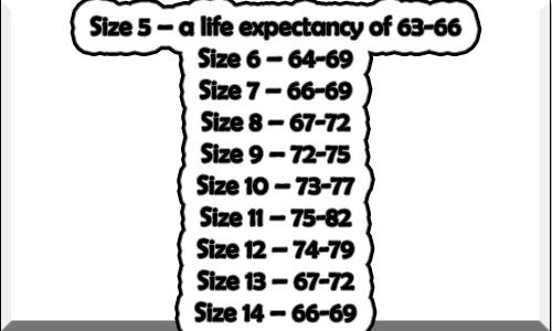 Life Expectancy Basis Foot Size