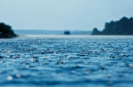 Monsoons Rains