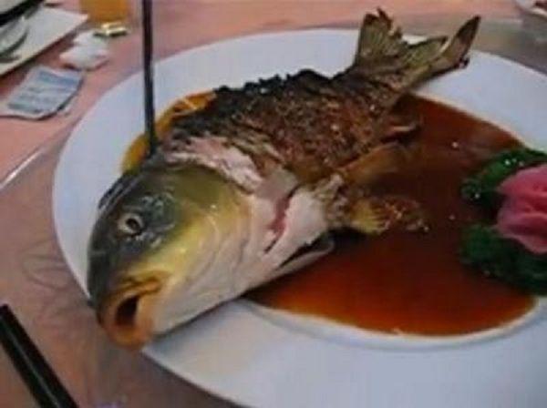 bizarre cuisines
