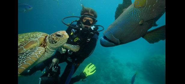 beginner level scuba diving
