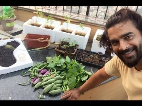 Vegetarian Actors - Madhavan