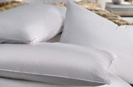 Pillow Variety
